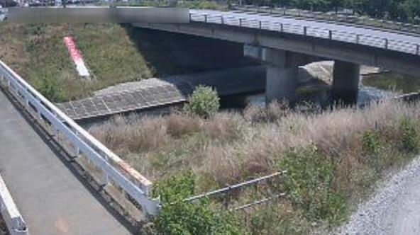 市野川天神橋観測所ライブカメラ(埼玉県東松山市松山)