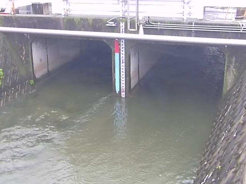 土留木川土留木橋ライブカメラ(愛知県東海市名和町)