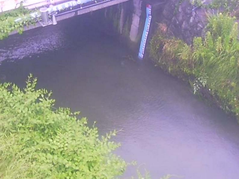 大田川順見橋ライブカメラ(愛知県東海市加木屋町)