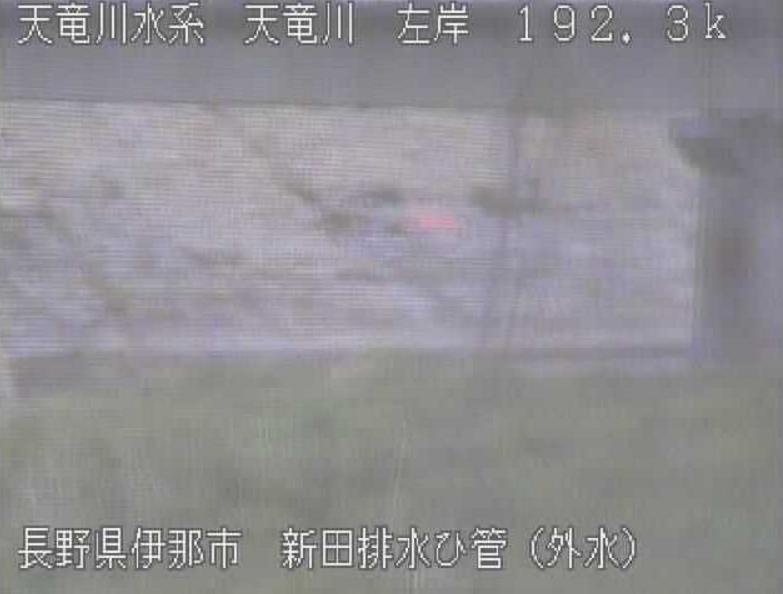 天竜川新田排水樋管ライブカメラ(長野県伊那市下新田)