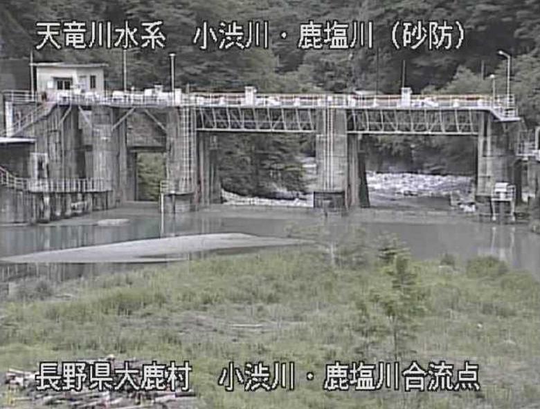 小渋川鹿塩川合流点ライブカメラ(長野県大鹿村大河原)