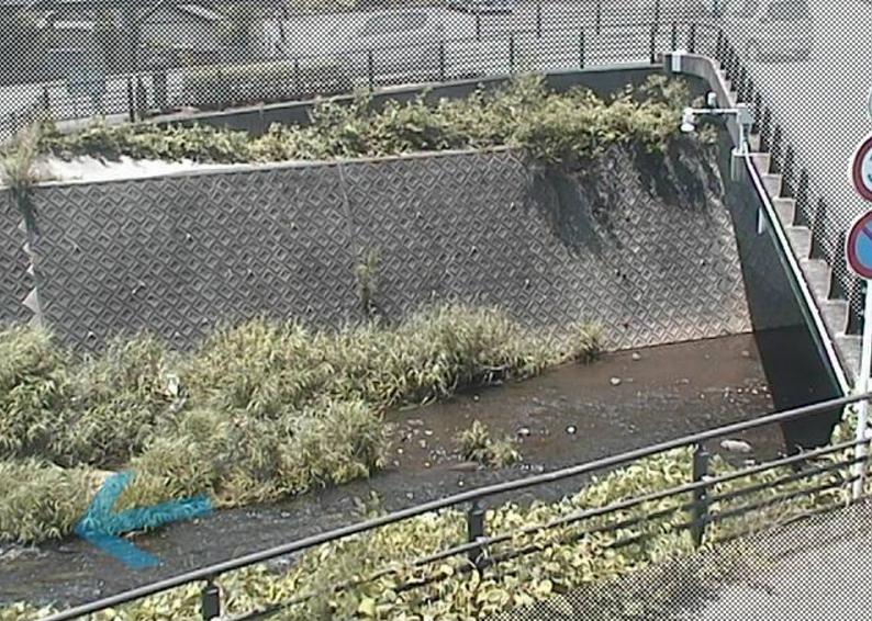 大場川下神川橋ライブカメラ(静岡県三島市加茂川町)