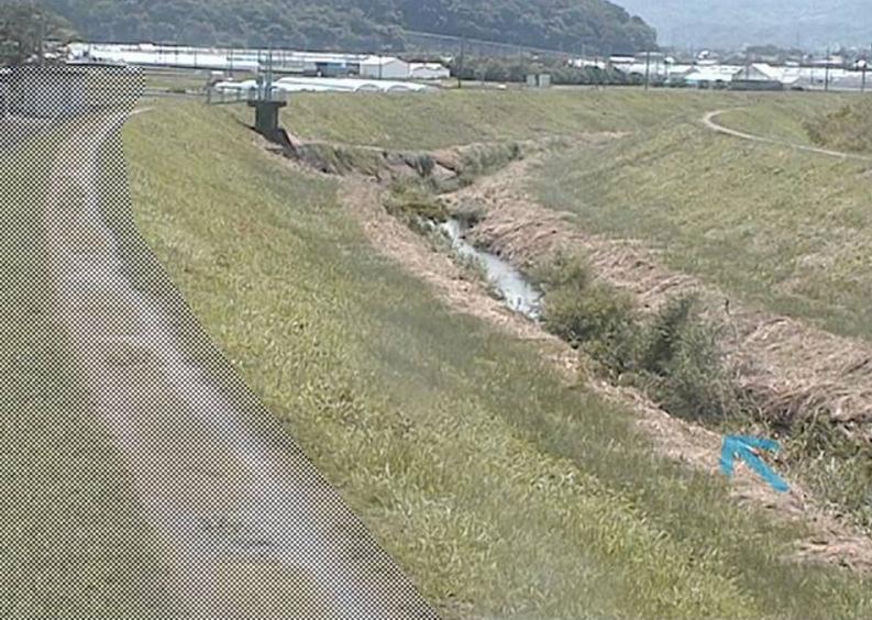 柿沢川松の木橋ライブカメラ(静岡県函南町畑毛)