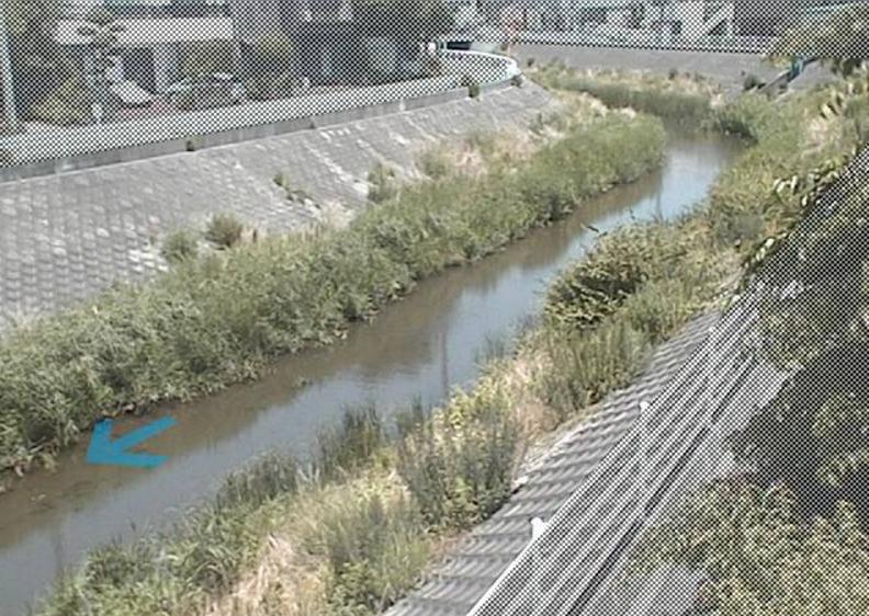韮山古川中条橋ライブカメラ(静岡県伊豆の国市中条)