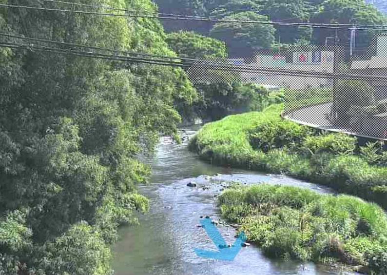 伊東大川和泉橋ライブカメラ(静岡県伊東市宮川町)