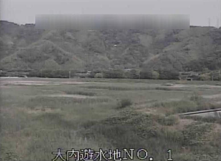 巴川大内遊水地第1ライブカメラ(静岡県静岡市清水区)