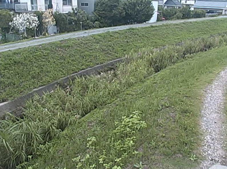 白川新屋橋ライブカメラ(愛知県豊川市)