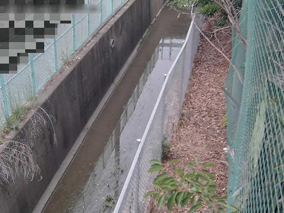 伊丹排水路南中学校西ライブカメラ(兵庫県伊丹市南町)