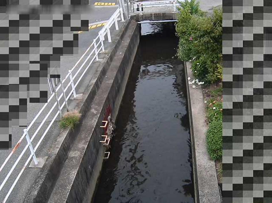 伊丹排水路野間交番ライブカメラ(兵庫県伊丹市野間)