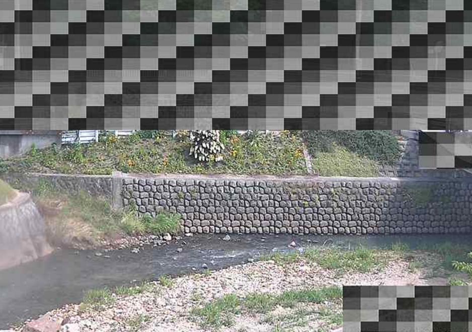 天神川大池橋北ライブカメラ(兵庫県伊丹市中野東)