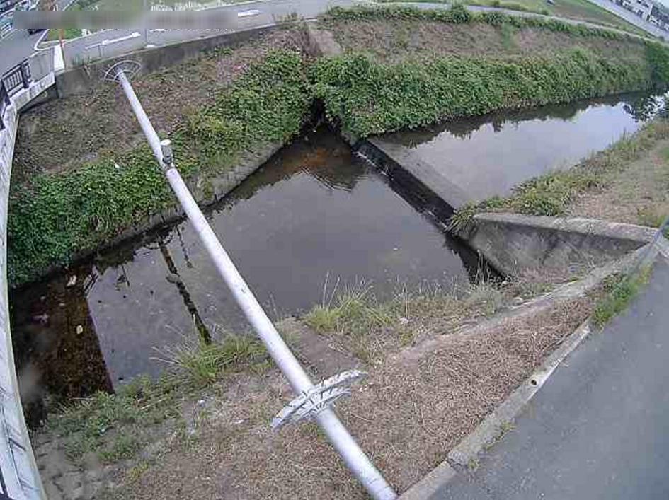 天王寺川五月橋ライブカメラ(兵庫県伊丹市鴻池)