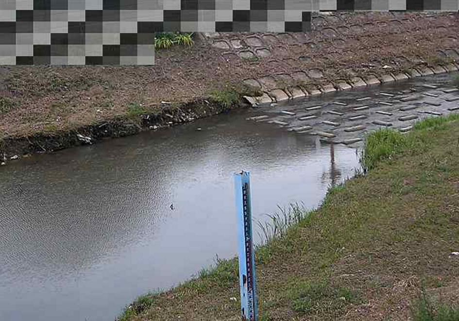 天王寺川十六名公園南ライブカメラ(兵庫県伊丹市西野)