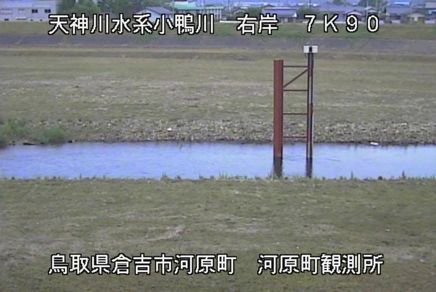 小鴨川河原町観測所ライブカメラ(鳥取県倉吉市河原町)