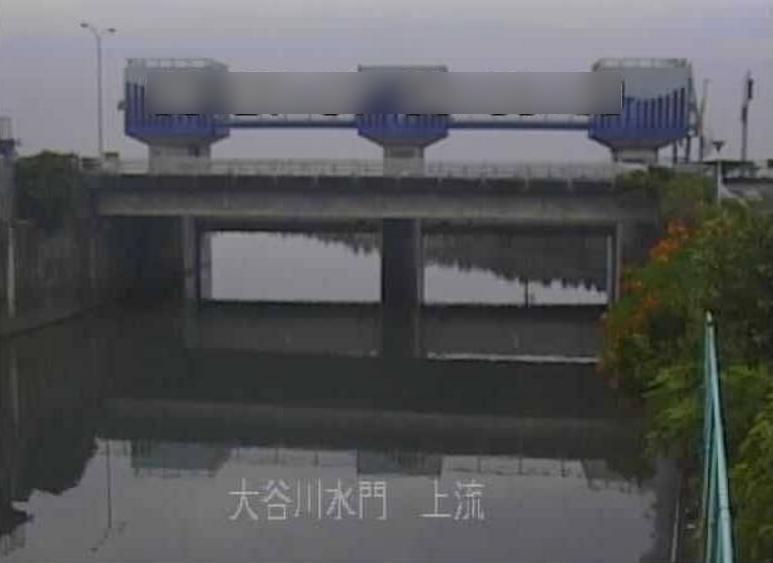 大谷川大谷川水門上流ライブカメラ(静岡県静岡市駿河区)