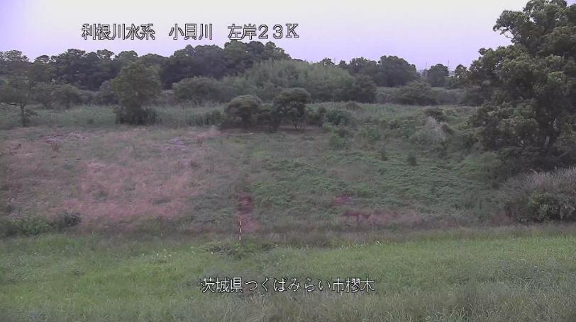小貝川樛木ライブカメラ(茨城県つくばみらい市樛木)