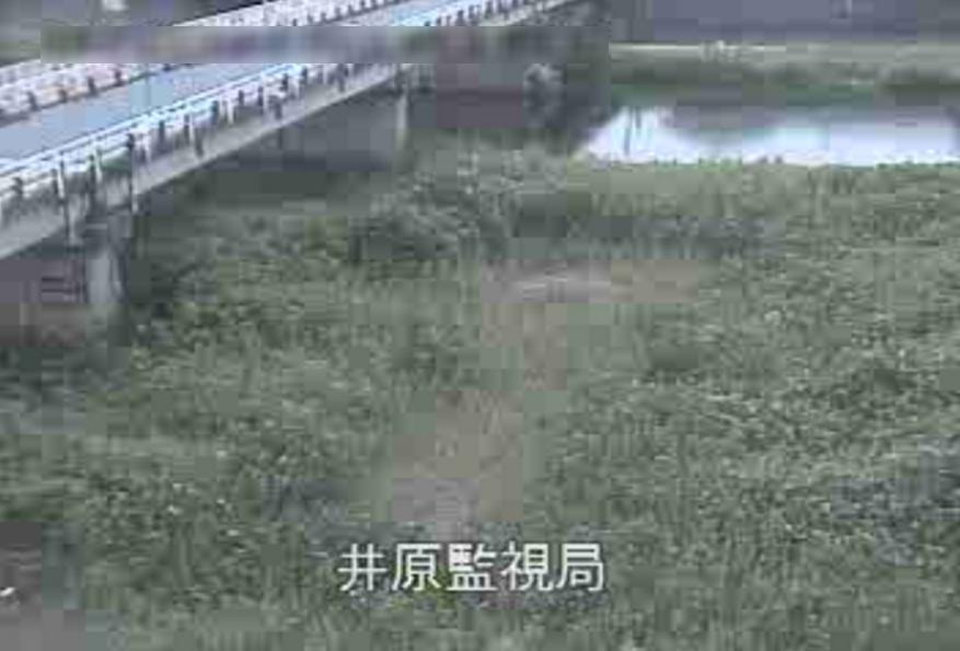 小田川井原ライブカメラ(岡山県井原市西江原町)