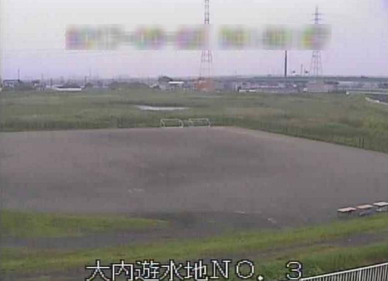 巴川大内遊水地第3ライブカメラ(静岡県静岡市清水区)
