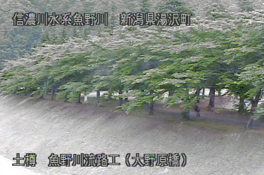 魚野川大野原橋ライブカメラ(新潟県湯沢町土樽)