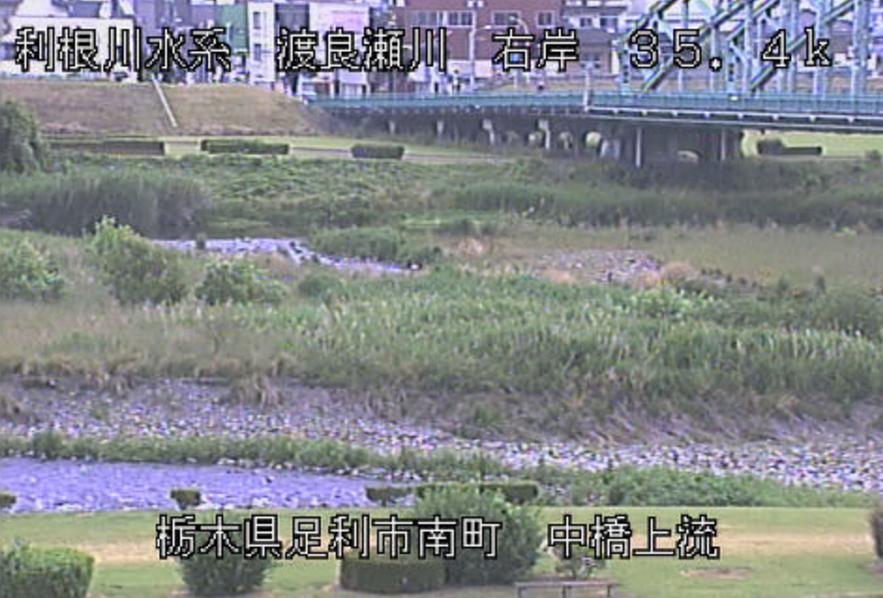 渡良瀬川中橋上流ライブカメラ(栃木県足利市南町)