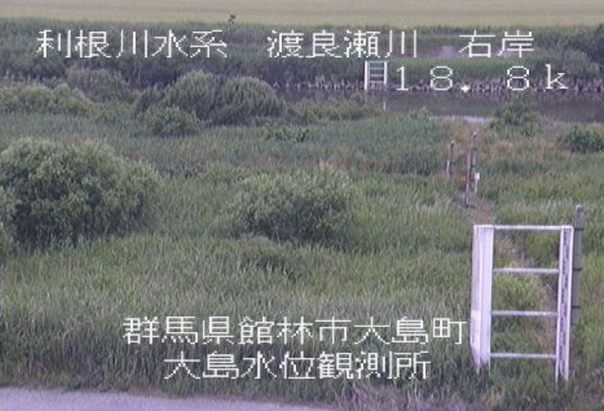 渡良瀬川大島水位観測所ライブカメラ(群馬県館林市大島町)