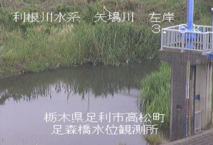 矢場川足森橋水位観測所ライブカメラ(栃木県足利市高松町)