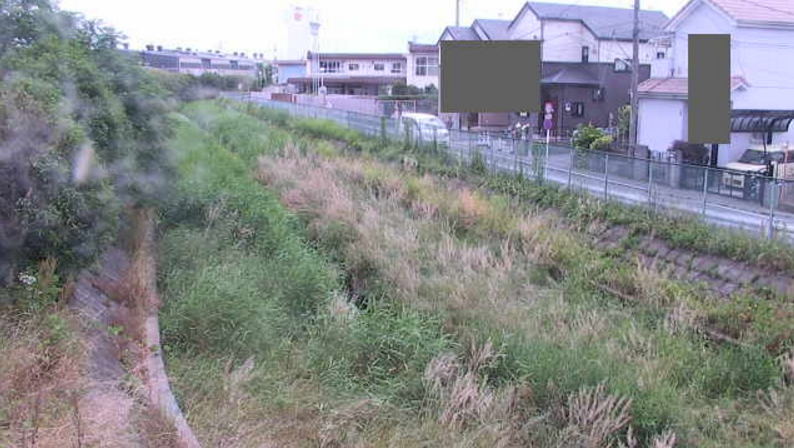 芝川鎌倉橋ライブカメラ(埼玉県上尾市二ツ宮)