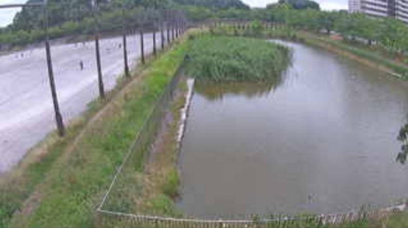 滝沼川第2遊水地ライブカメラ(埼玉県さいたま市西区)