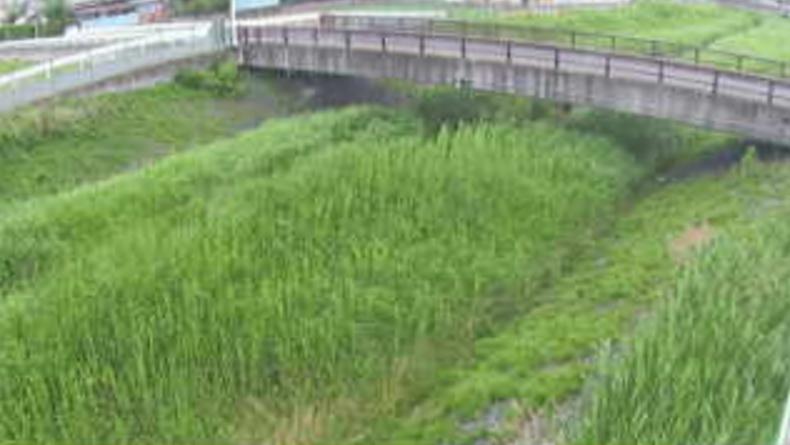 新川最下流点ライブカメラ(埼玉県さいたま市西区)