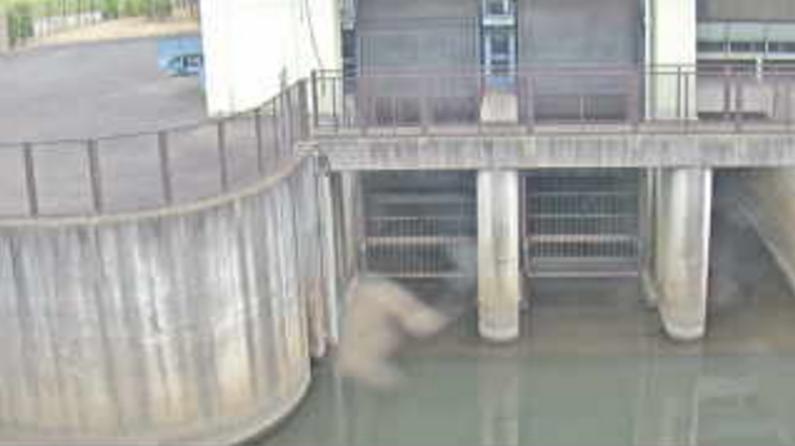 皇山川最下流点ライブカメラ(埼玉県さいたま市浦和区)
