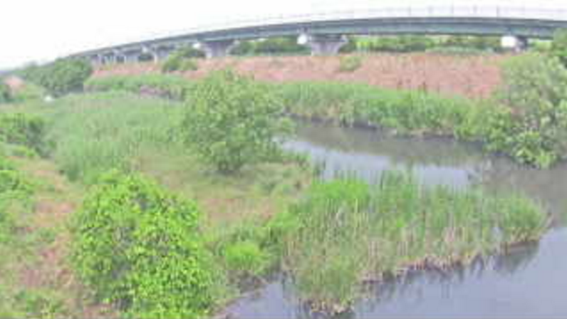 芝川皇山川合流点ライブカメラ(埼玉県さいたま市浦和区)