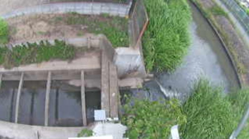 上院川最下流点ライブカメラ(埼玉県さいたま市岩槻区)