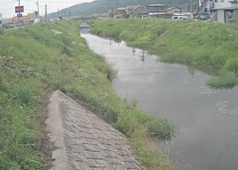 新川東下り橋ライブカメラ(長野県諏訪市湖南)