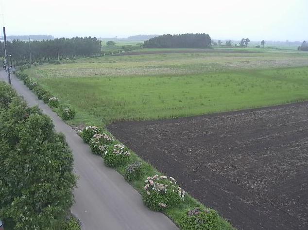 自然体験ランド自然苑ライブカメラ(青森県横浜町大豆田)