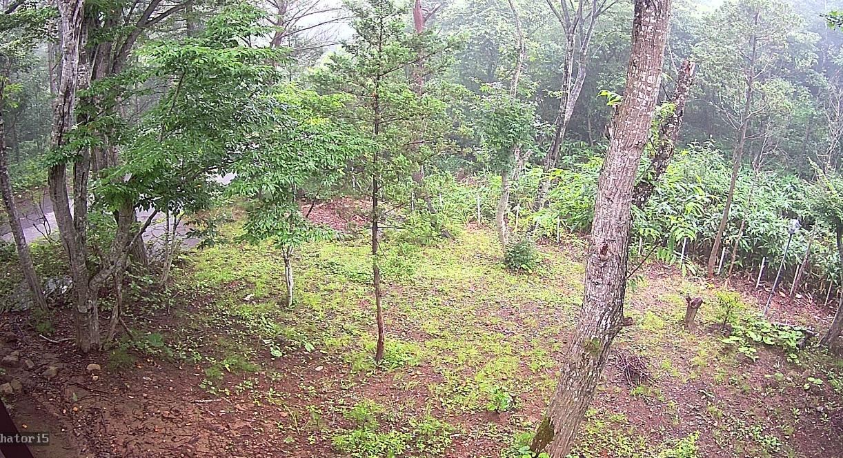羽鳥湖平和郷別荘地第5ライブカメラ(福島県天栄村田良尾)