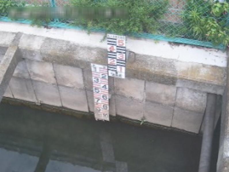 大根川水路代々木一の橋ライブカメラ(神奈川県秦野市鶴巻南)