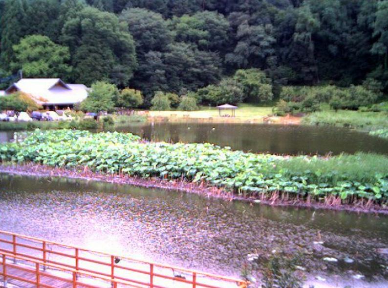 明見湖ライブカメラ(山梨県富士吉田市小明見)