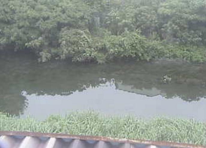 山崎川駈上ライブカメラ(愛知県名古屋市南区)