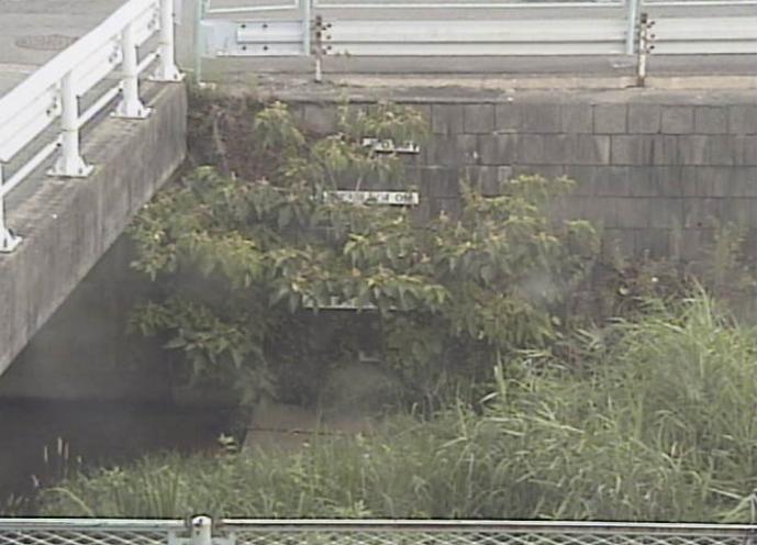 藤川古鳴海公園ライブカメラ(愛知県名古屋市緑区)