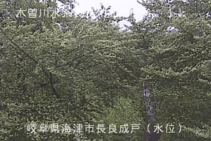 長良川長良成戸水位観測所ライブカメラ(岐阜県海津市海津町)