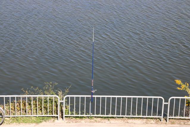釣り堀ライブカメラ