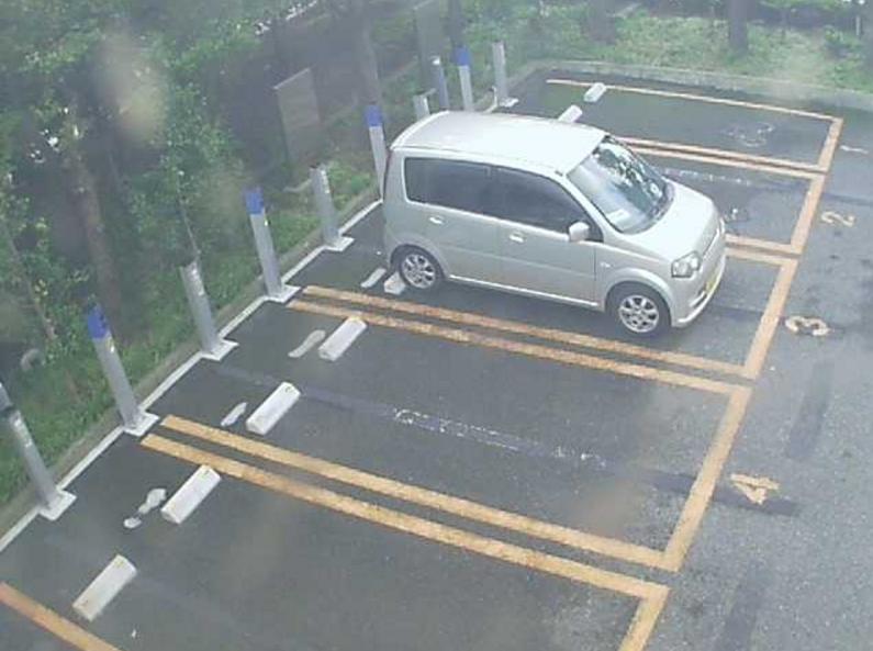 NTTルパルク新潟八千代第1駐車場1ライブカメラ(新潟県新潟市中央区)
