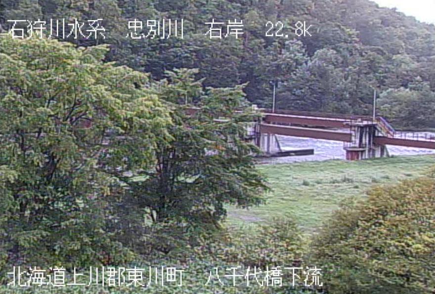 忠別川八千代橋ライブカメラ