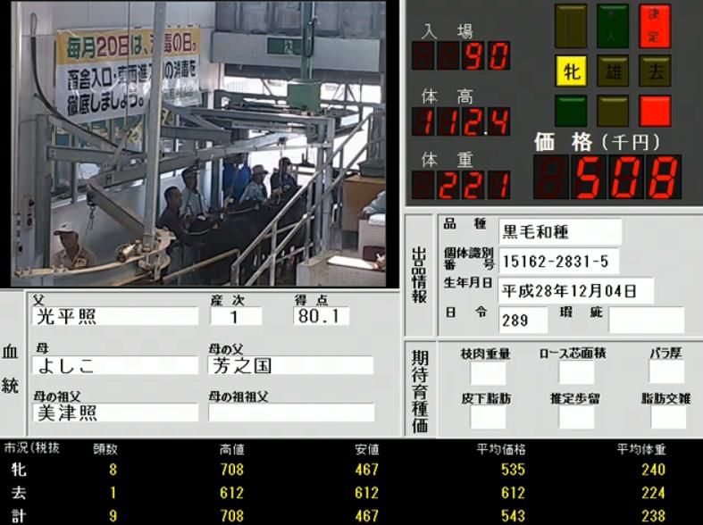 宮古家畜市場セリライブカメラ(沖縄県宮古島市平良下里)