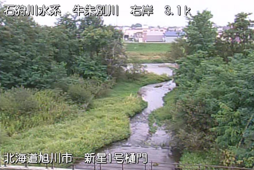 牛朱別川第1新星樋門ライブカメラ(北海道旭川市11条通)