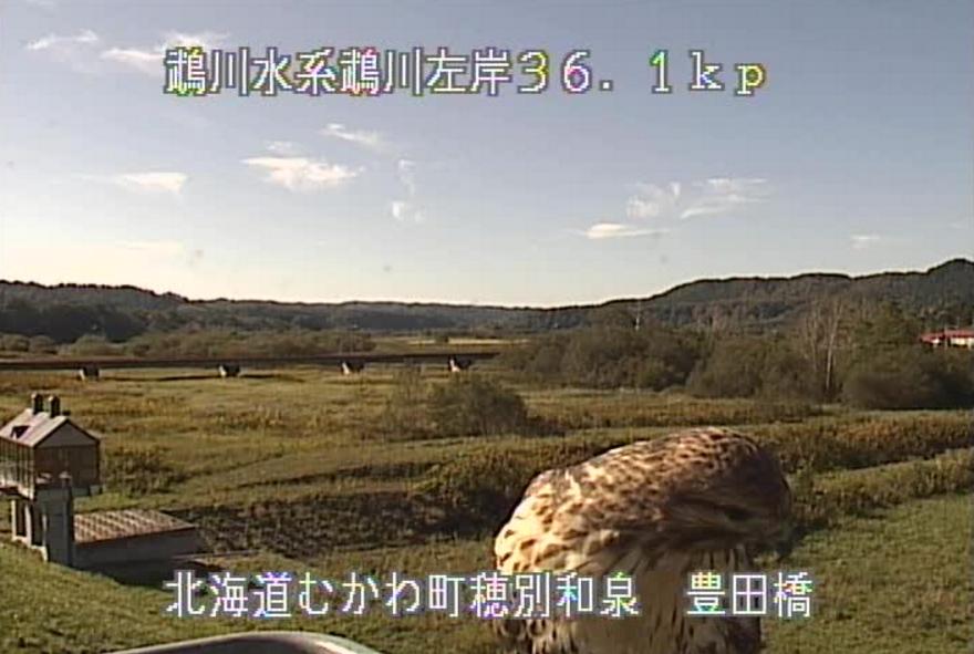 鵡川豊田橋ライブカメラ(北海道むかわ町穂別和泉)