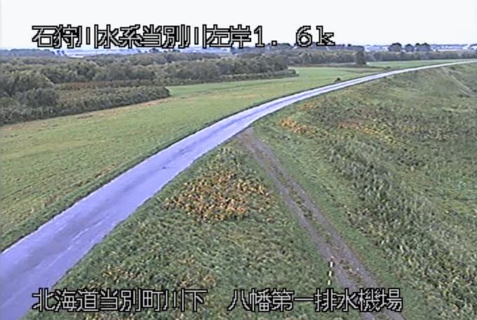 当別川八幡第一排水機場ライブカメラ(北海道当別町川下)