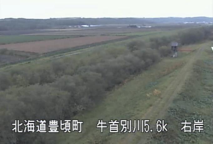 牛首別川二の宮第2樋門ライブカメラ(北海道豊頃町二宮)
