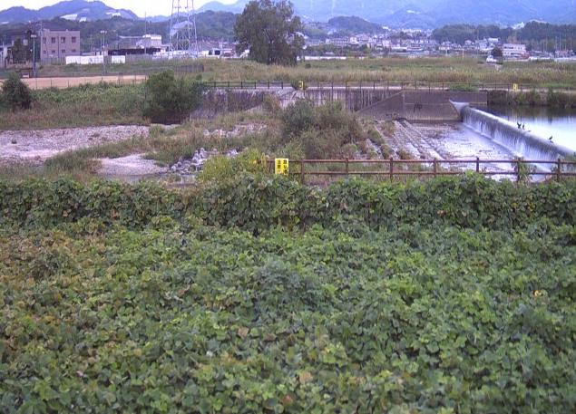 石川河南橋ライブカメラ
