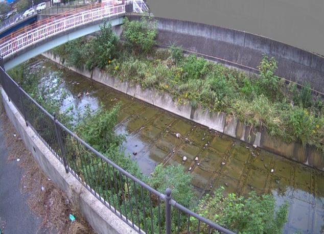 天竺川のぞみ橋ライブカメラ
