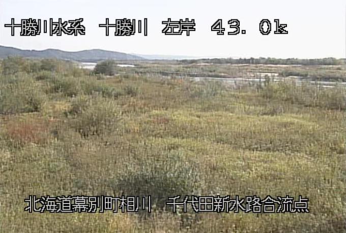 十勝川千代田新水路合流点左岸ライブカメラ(北海道幕別町相川)